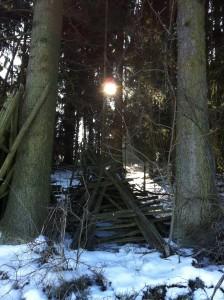 Kleehütten im Wald