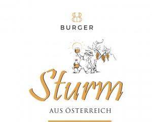 Burger Sturm